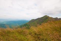 Obszar trawiasty i góry Tajlandia Obrazy Royalty Free
