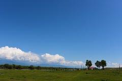 Obszar trawiasty, rzeka, domy i niebieskie niebo, Obrazy Stock