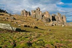 obszar trawiasty skały Zdjęcia Stock