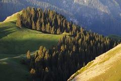 Obszar trawiasty z górami Obrazy Royalty Free