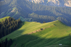 Obszar trawiasty z górami zdjęcie royalty free