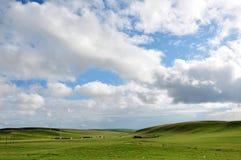 Obszar trawiasty z niebieskiego nieba i bielu chmurami Obrazy Royalty Free