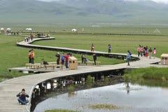 obszaru trawiasty plateau scenerii tibetan zdjęcie stock