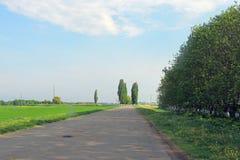 Obszary wiejscy pole Droga Drzewa Zdjęcie Stock