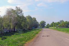 Obszary wiejscy pole Droga Drzewa Zdjęcia Stock