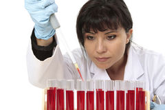 Obtaining sample from test tube. Scientist, pathologist or other lab worker takes a sample from a test tube Royalty Free Stock Photo