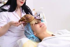 Obtendo a limpeza da pele do caracol no salão de beleza Fotografia de Stock Royalty Free