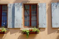 Obturador gris de la ventana con las flores fotos de archivo