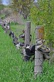 Obuwiany ogrodzenie Obraz Royalty Free