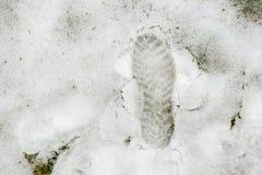 Obuwie ślad na śniegu Zdjęcie Royalty Free