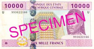 obverse банкноты франка 10000 центрально-африканский CFA стоковое изображение