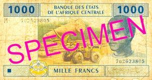 obverse банкноты франка 1000 центрально-африканский CFA стоковая фотография rf