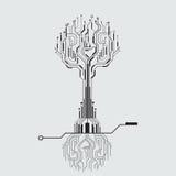Obwód deski drzewo Obraz Royalty Free