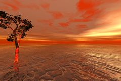 Océan étranger rouge avec solitaire Photo stock