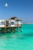 Océan bahamien grand de station de vacances de sandales Photographie stock libre de droits