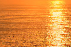 Océan d'or photo libre de droits