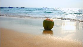 océan de noix de coco Photos stock