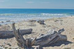 Océan en bois de dérive Images stock