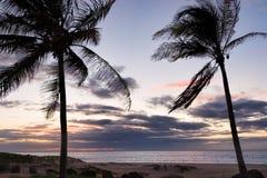 Océan et coucher du soleil de palmiers en Hawaï Photographie stock