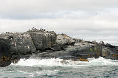 Océan rocheux Photos stock