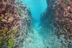 Océan sous-marin de South Pacific d'érosion de récif de fossé photos libres de droits