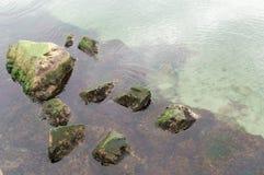 Océan vert frais photo libre de droits