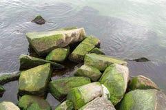 Océan vert frais images stock