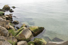 Océan vert frais photo stock