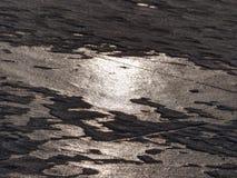 Océano bajo cubierta transparente del hielo El resplandor del sol en el hielo plano Imagen de archivo libre de regalías