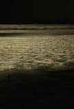 Océano de la noche Imagenes de archivo