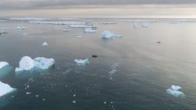 Océano del glaciar de la vela del barco del zodiaco que sigue el tiro de la cacerola almacen de video