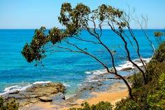 Océano meridional - Lorne Foto de archivo libre de regalías
