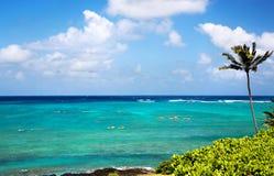 Océano, palmera y kajaks de la turquesa en Hawaii Imagen de archivo libre de regalías