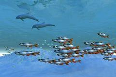 Océano salvaje Fotografía de archivo