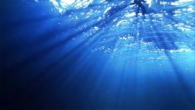 Océano subacuático almacen de video