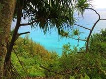 Océano tropical a través de la selva enorme Fotos de archivo libres de regalías