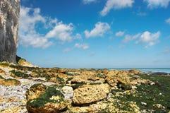 Océano y acantilados azules Imagen de archivo libre de regalías