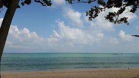 Océano y cielo azul enmarcados por el árbol Imagenes de archivo