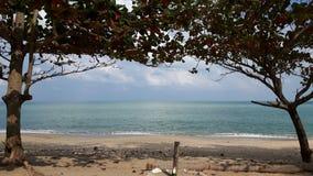Océano y cielo azul enmarcados por los árboles Fotos de archivo libres de regalías