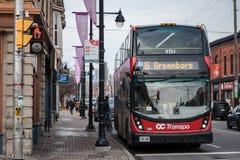 OC Transpo embleem op één van hun stedelijke bussen in Ottawa van de binnenstad royalty-vrije stock foto