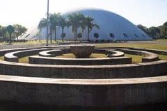 Oca in Ibirapuera-Park Stock Afbeeldingen