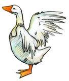 Oca isolata su n.3 bianco Illustrazione di Stock