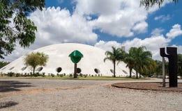Oca nel sao Paulo Brazil del parco di Ibirapuera Fotografia Stock