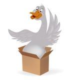Oca in una scatola Fotografia Stock Libera da Diritti