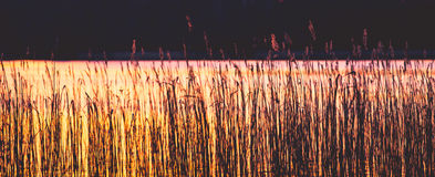 Ocaso al lago Fotos de archivo libres de regalías
