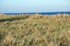 Ocaso en las dunas Imagen de archivo libre de regalías
