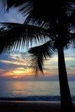 Ocaso tropical fotografía de archivo libre de regalías