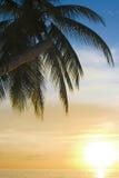 Ocaso tropical foto de archivo