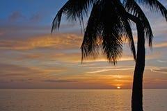Ocaso tropical Imágenes de archivo libres de regalías