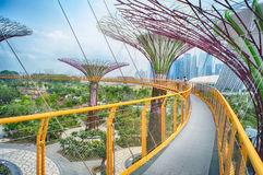 OCBC Skyway, trädgårdar vid fjärden Fotografering för Bildbyråer